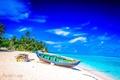 Картинка пляж, пальмы, океан, лодка, fantastic Maldives