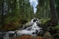 Картинка Болгария, водопад, Rila National Park, Skakavica Waterfall, Национальный парк Рила, лес, Bulgaria