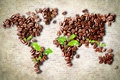 Картинка листья, кофе, карта, зерна, континенты