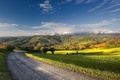 Картинка лето, дорога, поле, пейзаж
