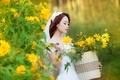 Картинка лето, настроение, цветы, девушка