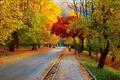 Картинка дорога, листья, деревья, парк, улица, листва, Осень, прогулка, листопад, road, trees, nature, park, autumn, leaves, ...