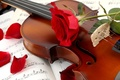 Картинка лепестки, ноты, красная, скрипка, цветок, роза