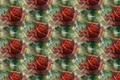 Картинка роса, фон, текстура, цветок, роза