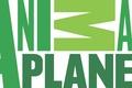 Картинка Animal Planet, телеканал, фон, научно-популярный