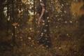 Картинка листья, вихрь, осень, лес, девушка