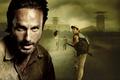 Картинка Ходячие мертвецы, Сара Уэйн Кэллис, Sarah Wayne Callies, Lori Grimes, The Walking Dead, Rick Grimes, ...