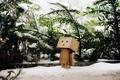 Картинка danbo, зима, снег, данбо, елки, ветви