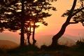 Картинка небо, горы, силуэт, зарево, деревья, закат