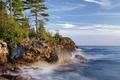 Картинка сосны, побережье, Алгома, Великие озёра, Canada, озеро, Онтарио, Great Lakes, Lake Superior, Algoma District, озеро ...