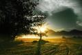 Картинка солнце, утро, поле, горы