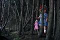 Картинка Lindsey Wixson, кукла, лес