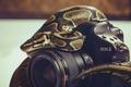 Картинка змея, фотоаппарат, объектив