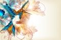 Картинка абстракция, крылья, вектор, клюв, колибри, птичка