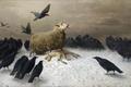 Картинка вороны, «Боль», August Friedrich Schenck, смерть, овца, овечка, гибель