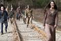 Картинка railroad, The walking dead, many makeup, zombies, metal