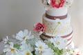 Картинка сладкое, анемоны, украшение, космея, торт, цветы